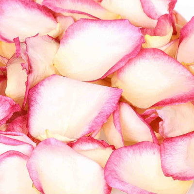 White and Pink Freeze Dried Edible Rose Petals