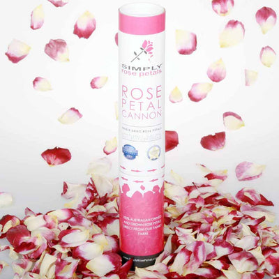 Burgundy and Ivory Freeze Dried Rose Petal Cannon