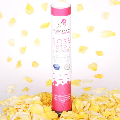 Yellow Freeze Dried Rose Petal Cannon