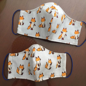 Reusable Face Mask - Jang Fox Canvas
