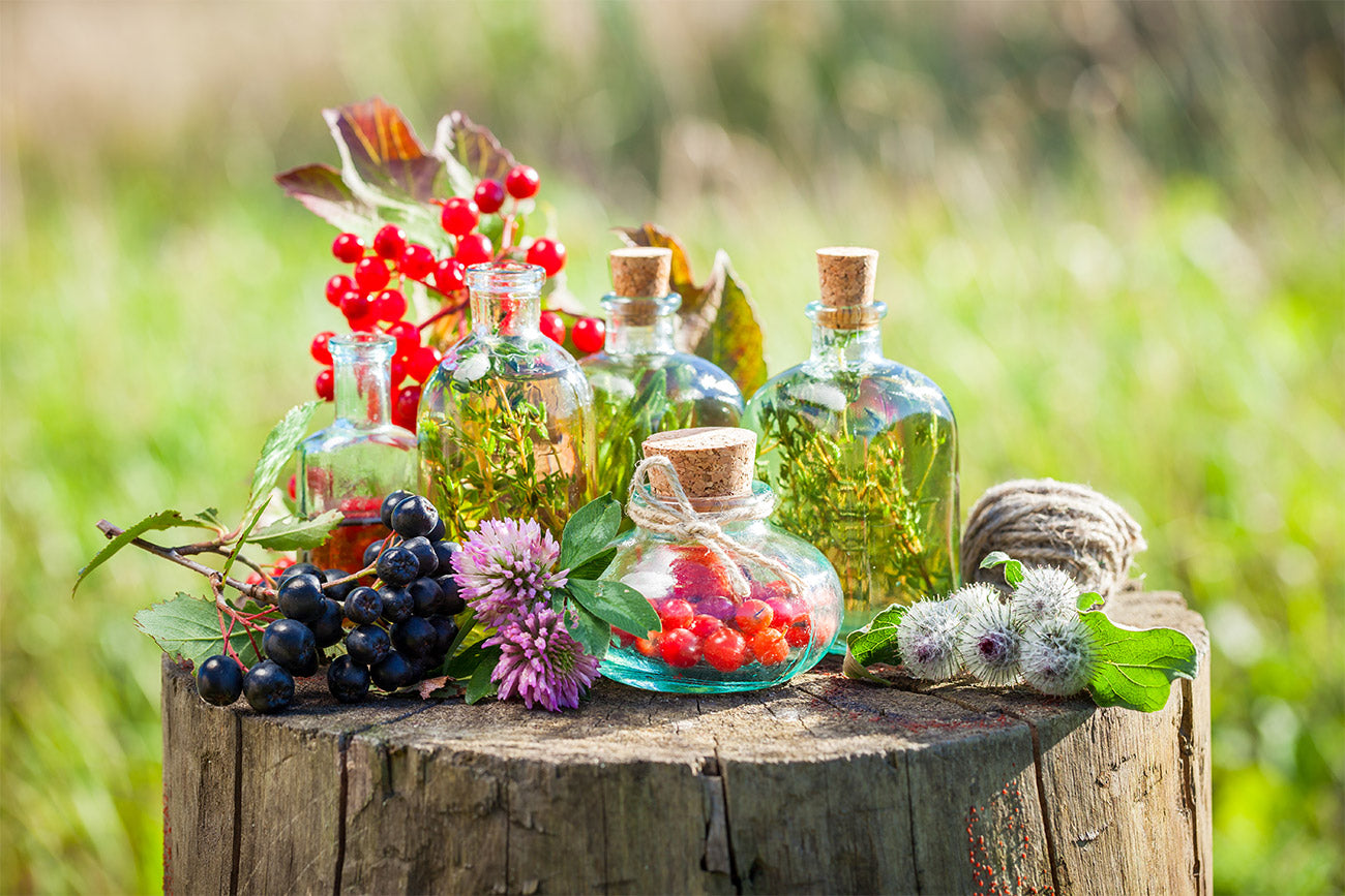 Transparent bottles of essential oils, herbs and berries