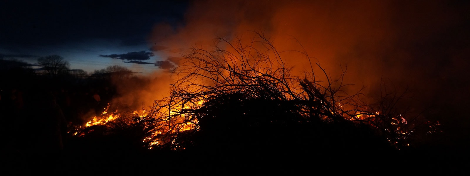 fire-branches