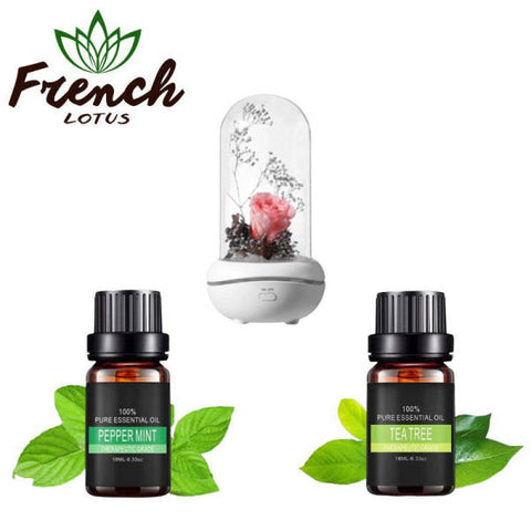 Essential Oil Diffuser Set | French Lotus