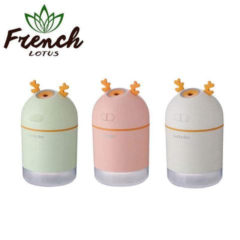 Mini Air Humidifier For Home And Car Use | French Lotus