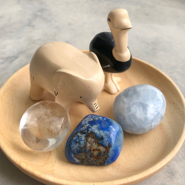 Little Round Mini Pebble Set: Ostrich + Elephant