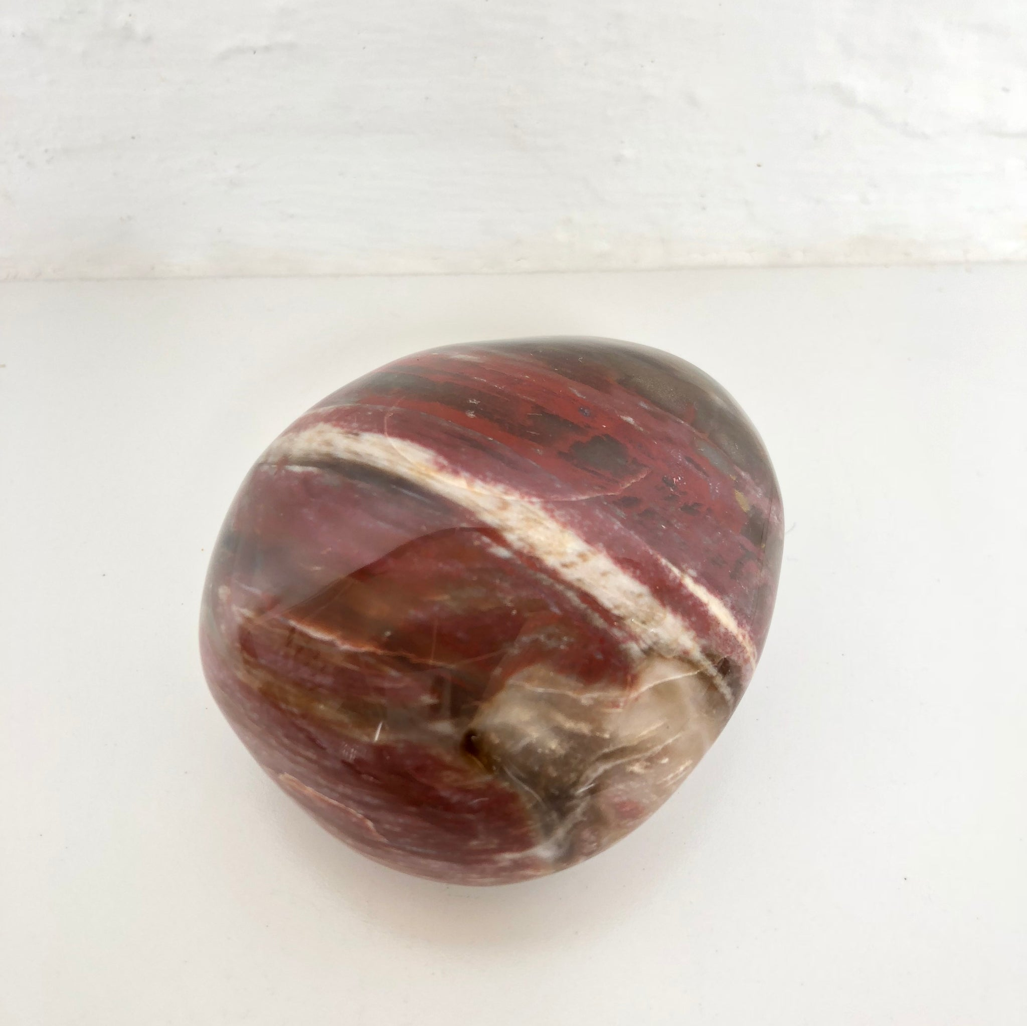Fossilized Red Wood 07