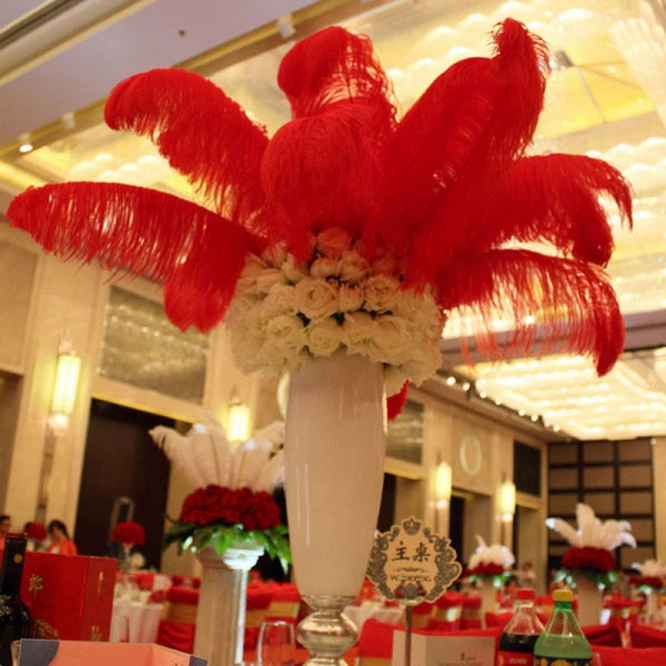 10pcs Natural Ostrich Feathers Party Wedding Decoration 12-14inch 30-35cm Red