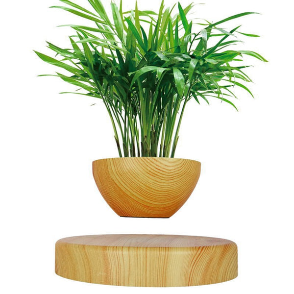 Levitating Plant Pot Maglev Potted Plants Creative Home Furnishings Suspended Potted Plant Bonsai Desk Decor  30+