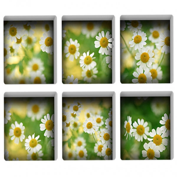 6pcs 13*13CM DIY 3D Anti Slip Waterproof Bathtub Sticker Removable Mural - Luminous Daisy
