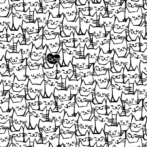 White Packed Cats 108in Quilt Back - The Modern Quilting Company