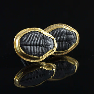 Trilobite & Gold Cufflinks