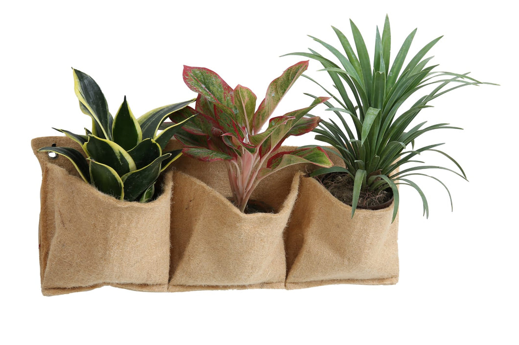 Eco Friendly Pocket Planters (3 Pocket)