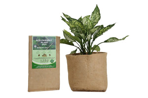 Outdoor Eco Friendly Jute Plant Pots (19 Liters)