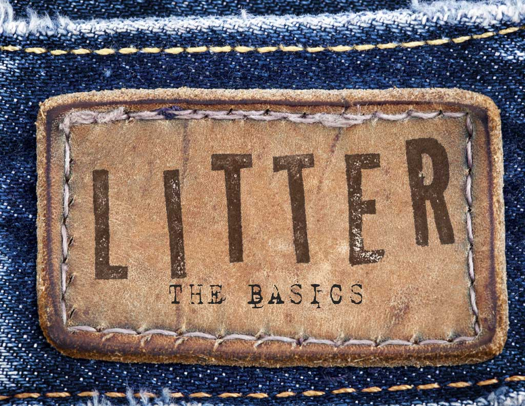 The Basics by LITTER