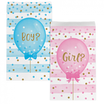 Treat Bags - Pkt 10 - Gender Reveal (Boy/Girl) (336689)