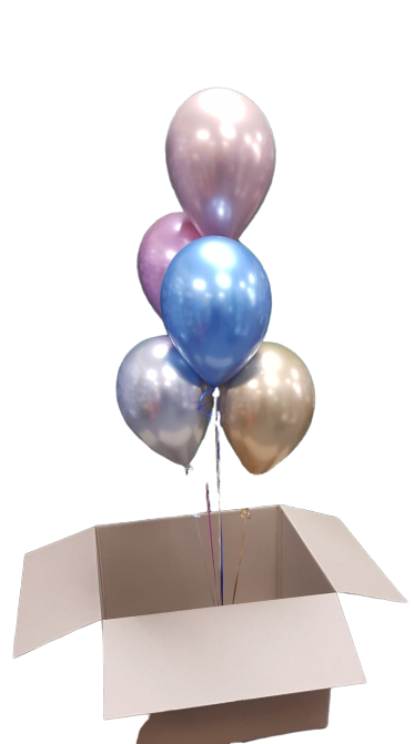 5 Balloons in a box
