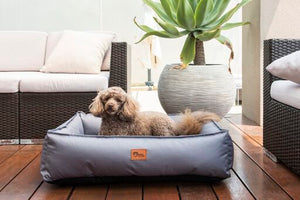 Ripstop Dog Lounger - Small