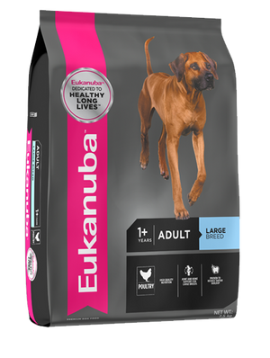 Eukanuba Dog Adult Large