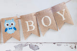 Owl Baby Shower Decor, It's A Boy Owl Banner