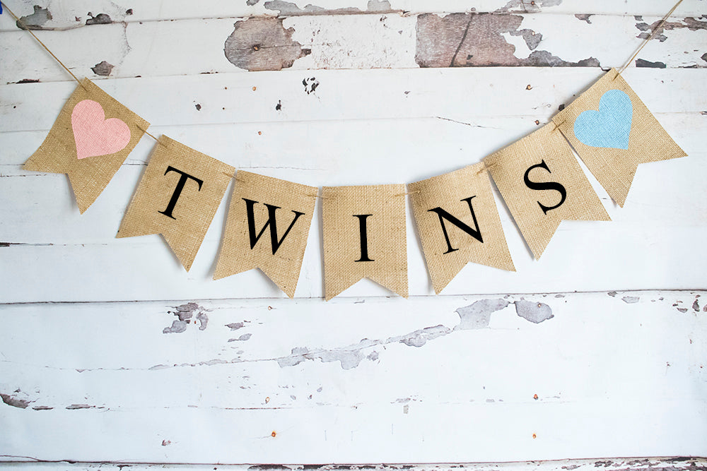 Gender Reveal Decor, Twins Baby Shower Banner