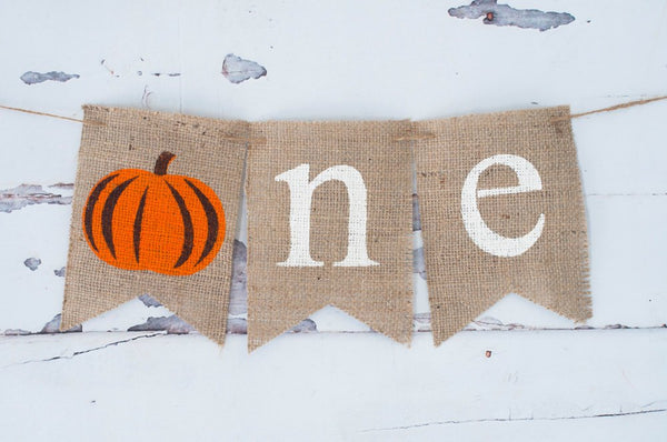 Fall 1st Birthday Party Banner, Pumpkin One Banner, Fall Highchair Party Prop, Little Pumpkin Sign, B335