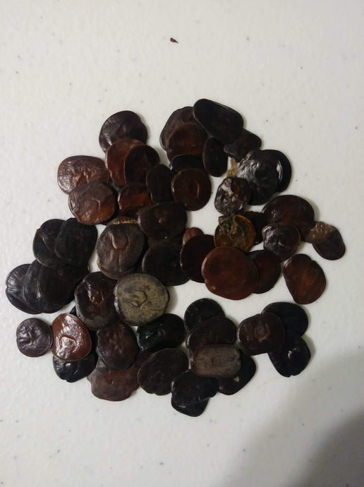 Yopo Vilca, seeds that have DMT, 5 MEO-DMT, and Bufotenine.