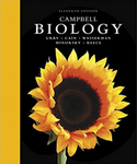 Campbell Biology, 11th Edition (eBook PDF) eTextbook