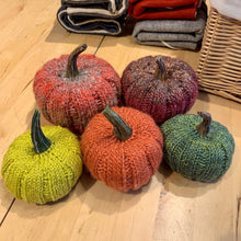 Load image into Gallery viewer, Pumpkin Spice Knitting Kit | Noro Silk Garden
