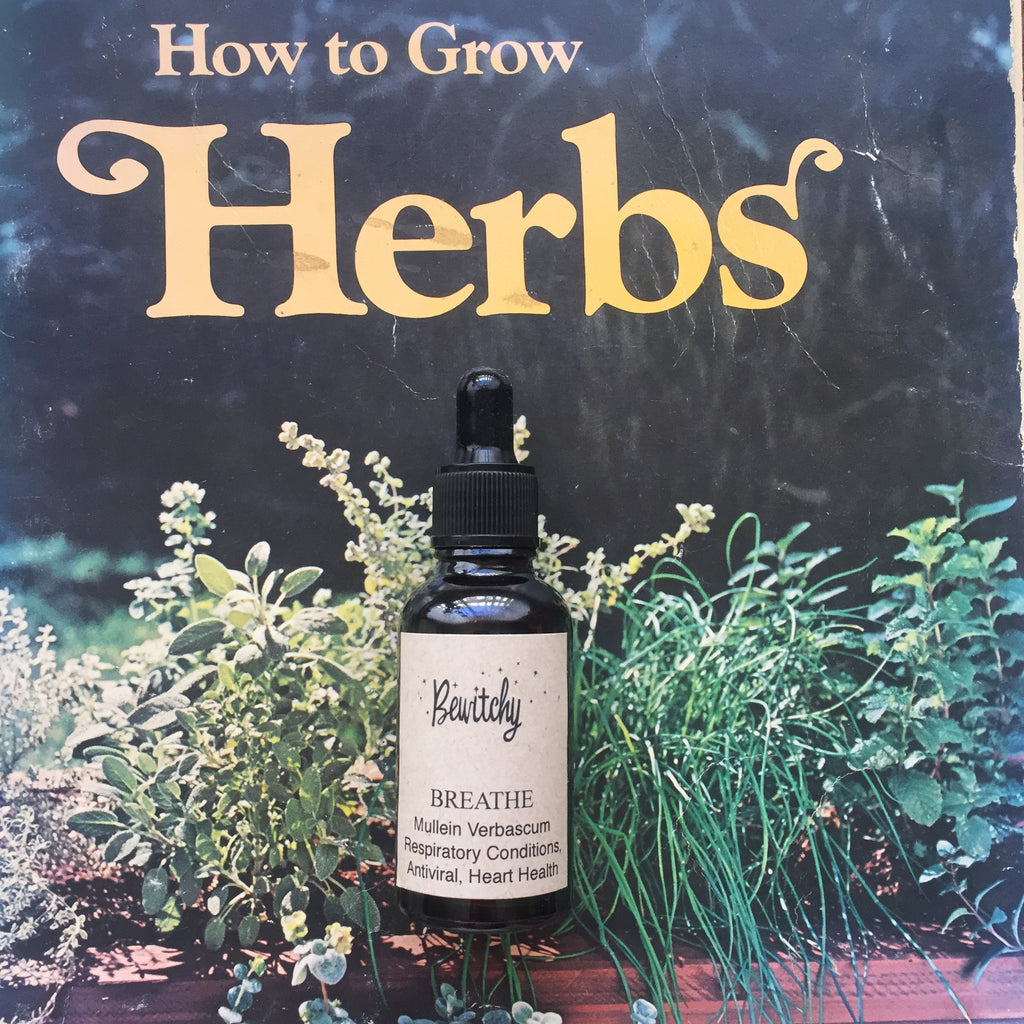 Breathe herbal tincture