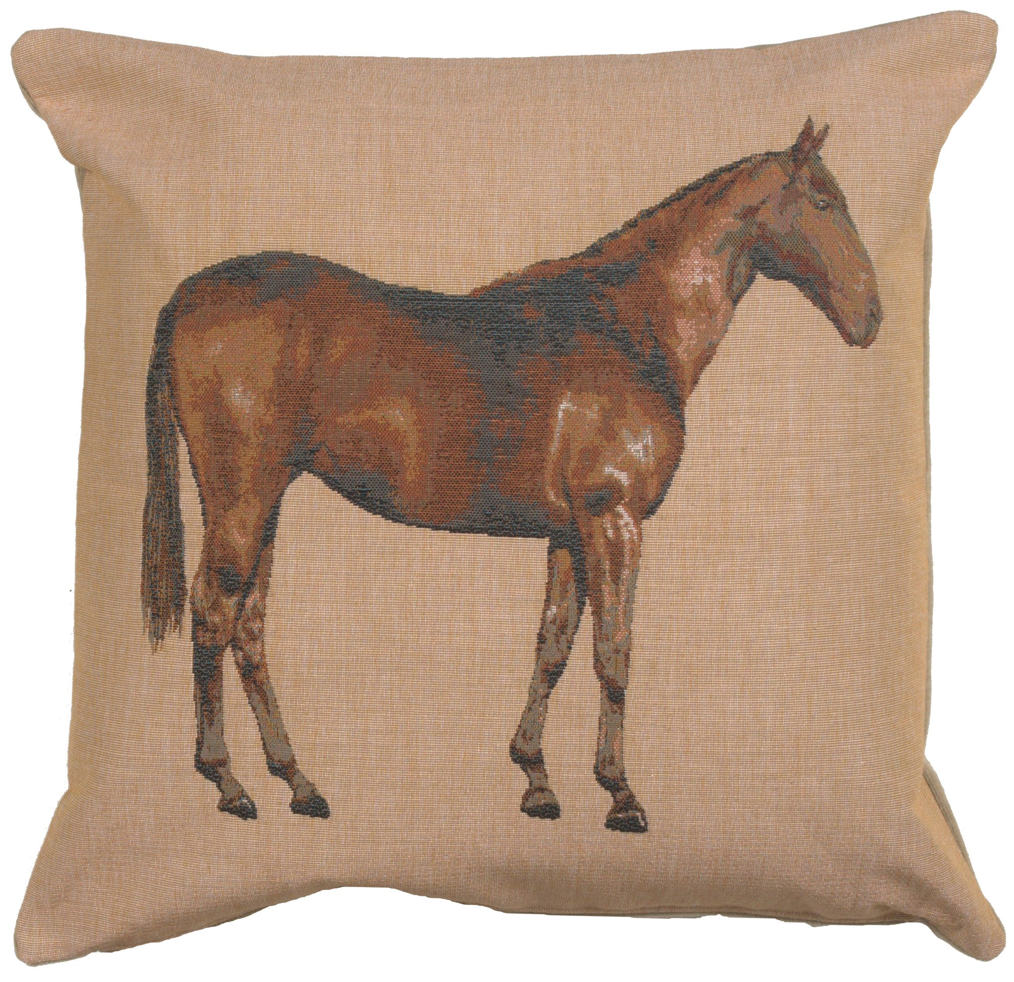 Horse Light 1 French Tapestry Cushion