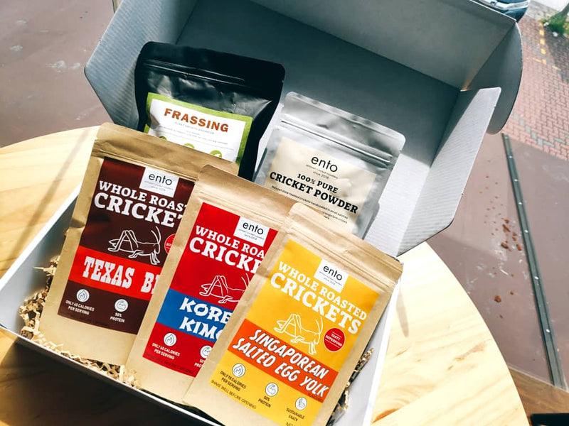 Malaysian cricket powder startup quietly raises seed funding from Rapzo Capital, further confirming the future of alternative protein