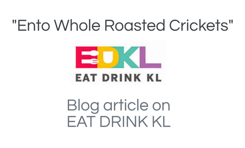 eat drink kl article about ento crickets
