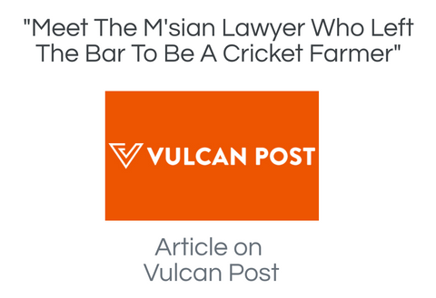 vulcan post article about ento crickets