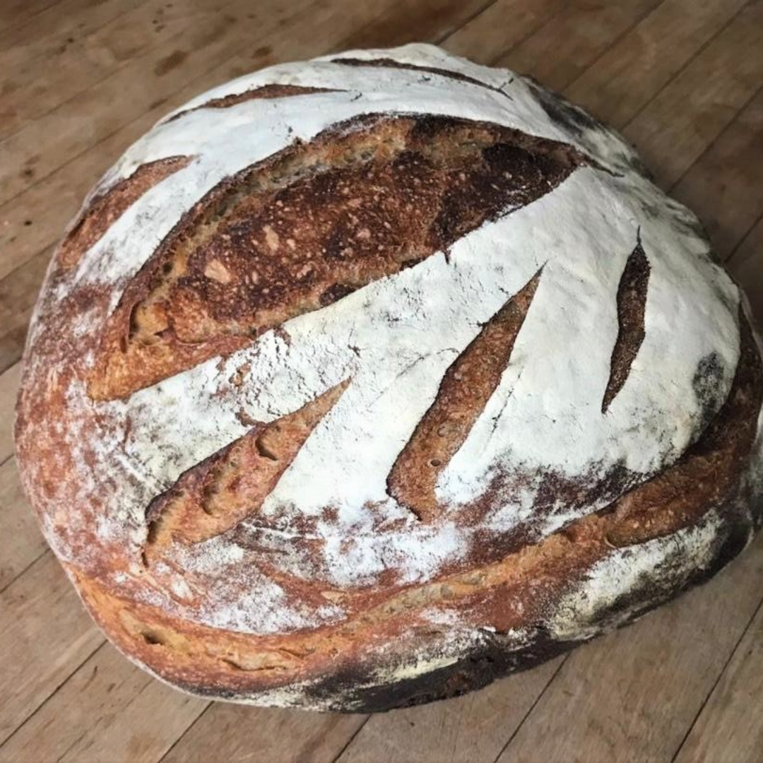 TCD x ento High Protein Sourdough Almond