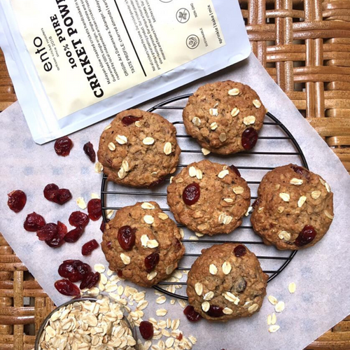Zoé x ento High Protein Cranberry Oatmeal Cookies (12 pieces x 25g)