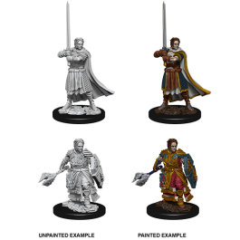D&D Nolzur's Marvelous Miniatures - Male Human Cleric (WAVE 8)