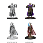 D&D Nolzur's Marvelous Miniatures - Human Ranger & Moon Elf Sorcerer (WAVE 8)
