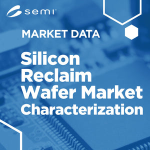 Silicon Wafer Reclaim Market Characterization Summary