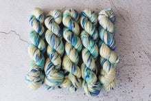 Load image into Gallery viewer, Snow Moon - DK BFL
