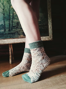 Murmuration Socks