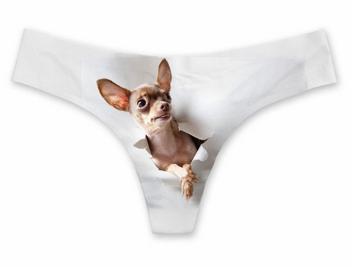 String 'Chihuahua uit je....'