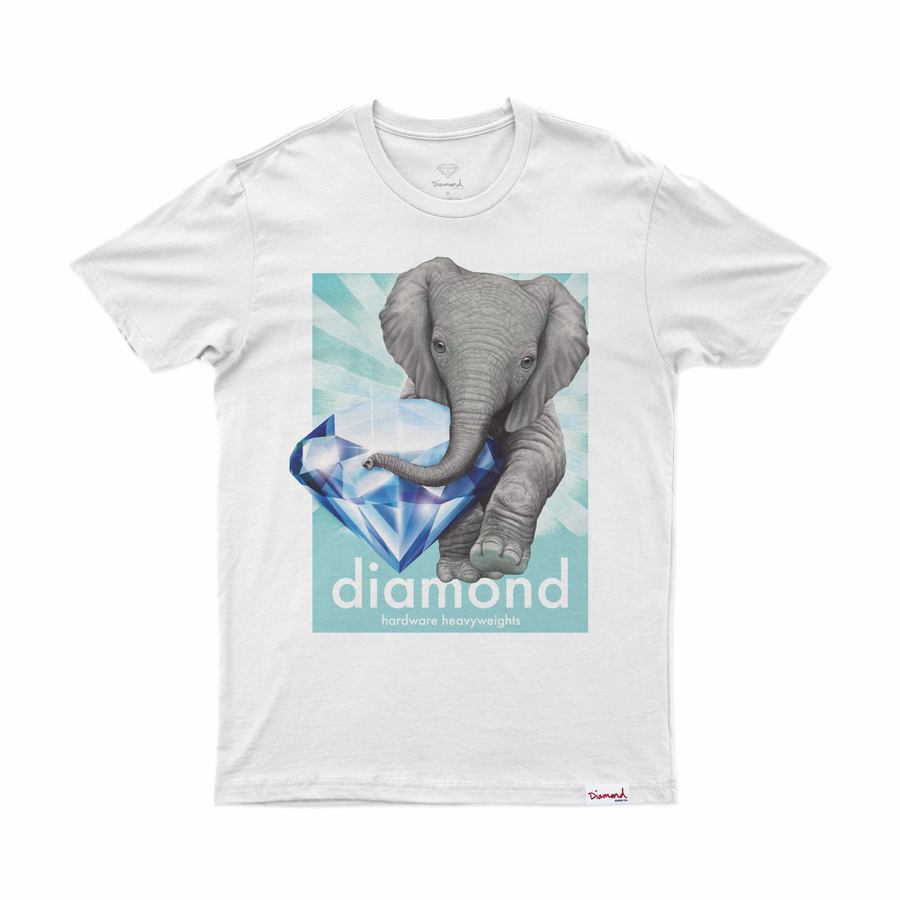 T-SHIRT DIAMOND ENDAGERED TEE - C19DMPA010 - Diamond Supply Co. Brasil