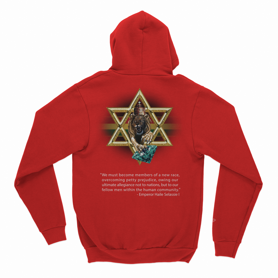 SWEATSHIRTS DIAMOND STAR OF DAVID HOODIE - D19DMPF017 - Diamond Supply Co. Brasil
