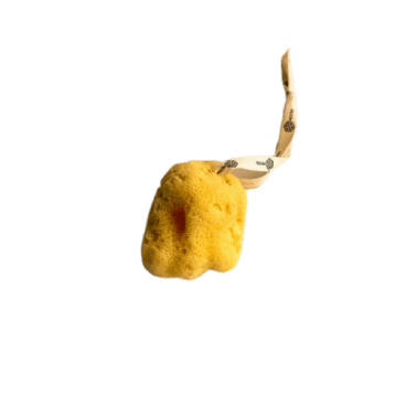 Nested | Fina Silk Natural Sea Sponge
