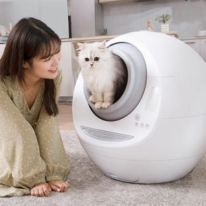2019 Fully automatic cat litter box