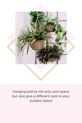 Hanging plants for home decor Anemos Lifestyle