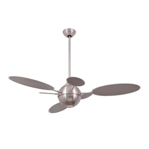 Cirque BN Ceiling Fan