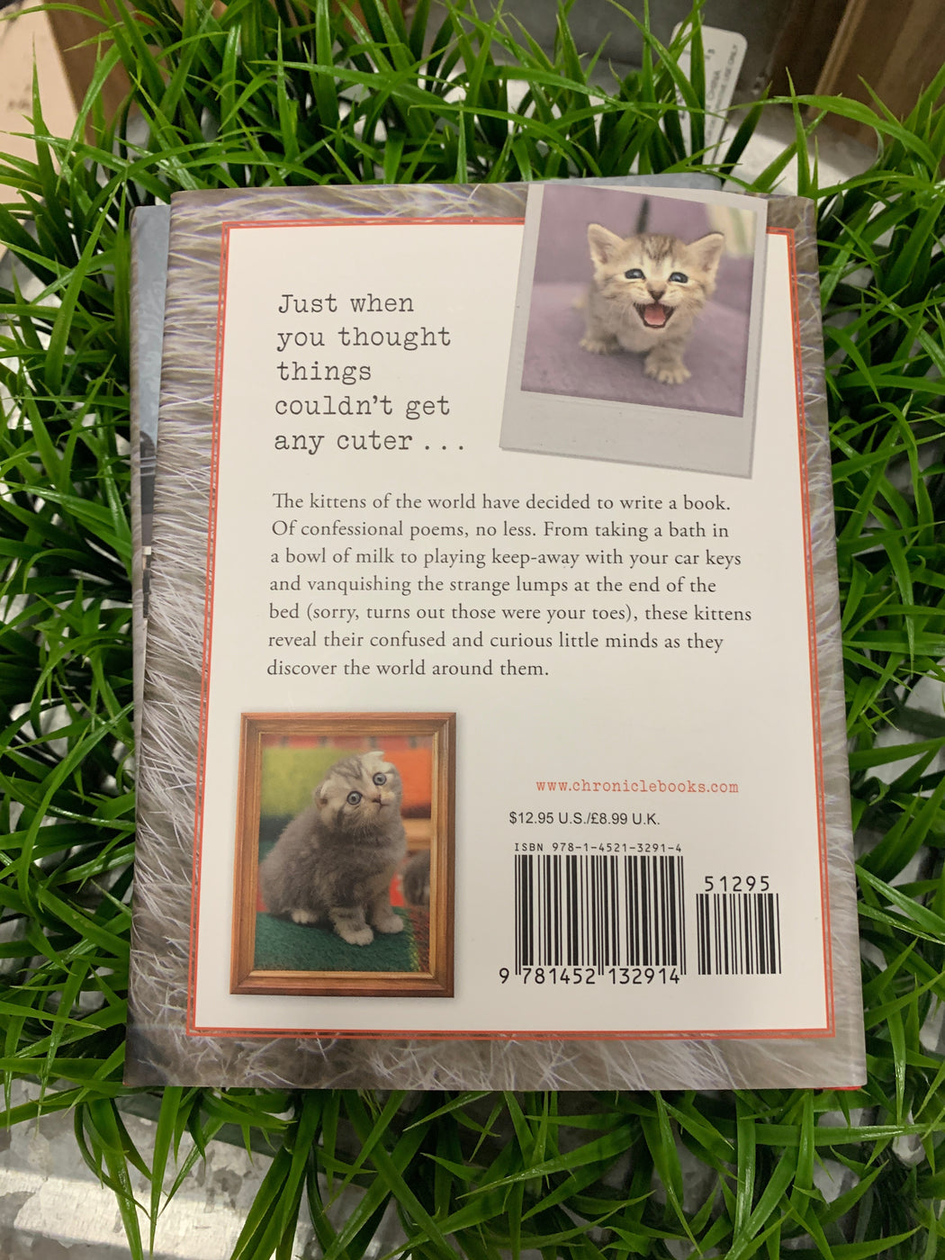 "I Knead My Mommy is a book of confessional poems about the triumphs, trials, and daily discoveries of being a kitten. From climbing walls to claiming hearts, these little cats bare all in such instant classics as ""And Then You Said 'No,'"" ""Ode to a Lizard I Didn't Know Is Also a Pet in This House,"" and ""I Will Save You."" With adorable photos of the poetic prodigies throughout, this volume gives readers a glimpse into their confused and curious feline minds as they encounter the world around them."