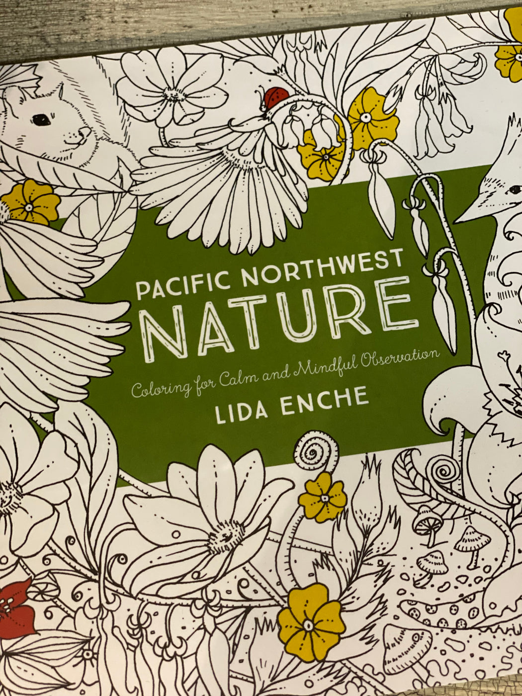 Two of our favorite things, in one box! Settle in for a little down time with a fresh pack of gel pens and our PNW nature coloring book, or get creative with your pens and draw your own picture in this Oregon themed notebook.