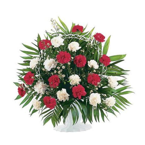 Display of Red and White Carnations